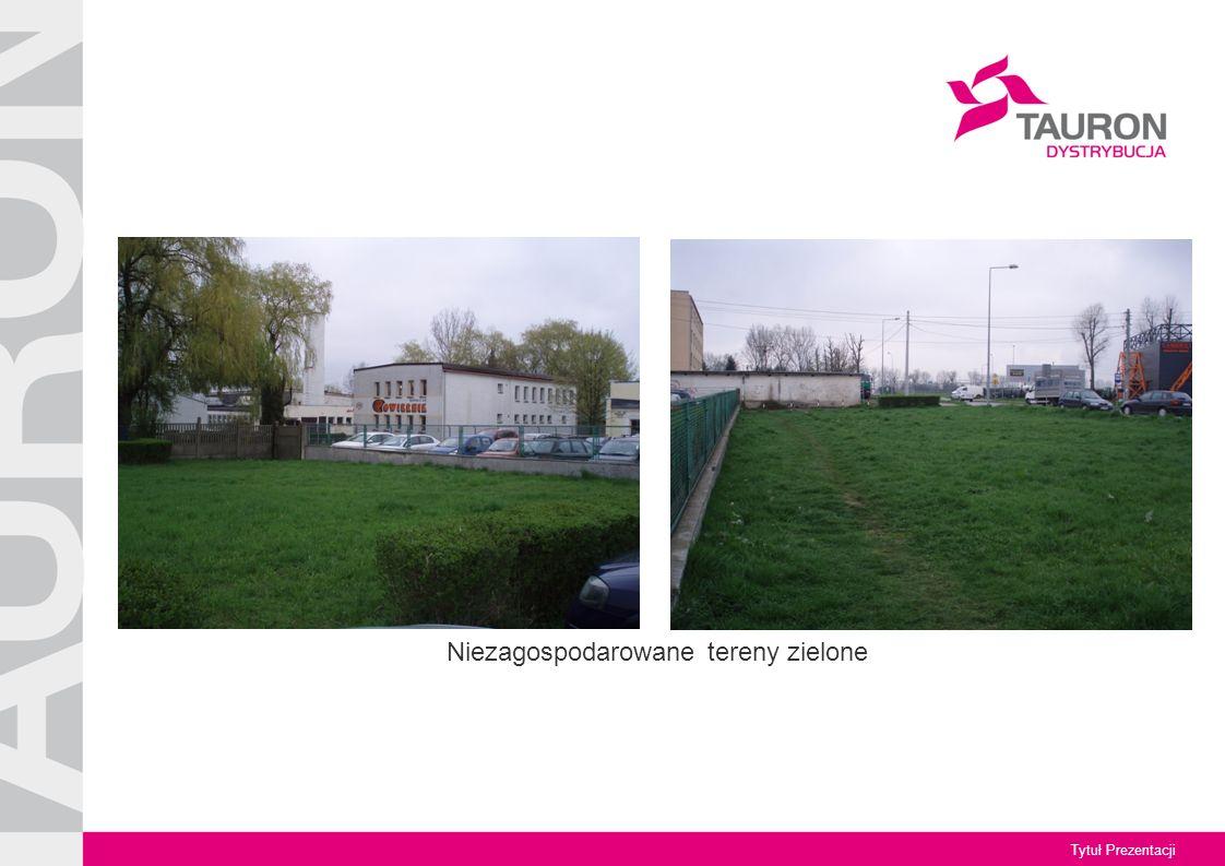 Tytuł Prezentacji Niezagospodarowane tereny zielone