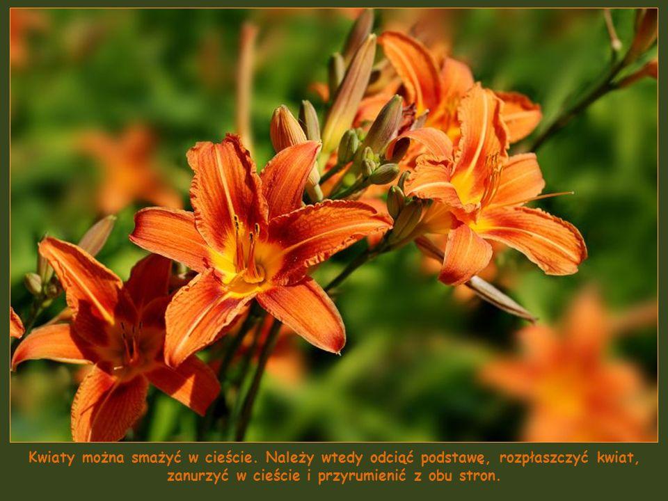 Pąki liliowców (nie mylić z liliami!) są jadalne. To kwiaty o zróżnicowanej barwie, słodkim posmaku i chrupiących płatkach. Nadają się do jedzenia nie