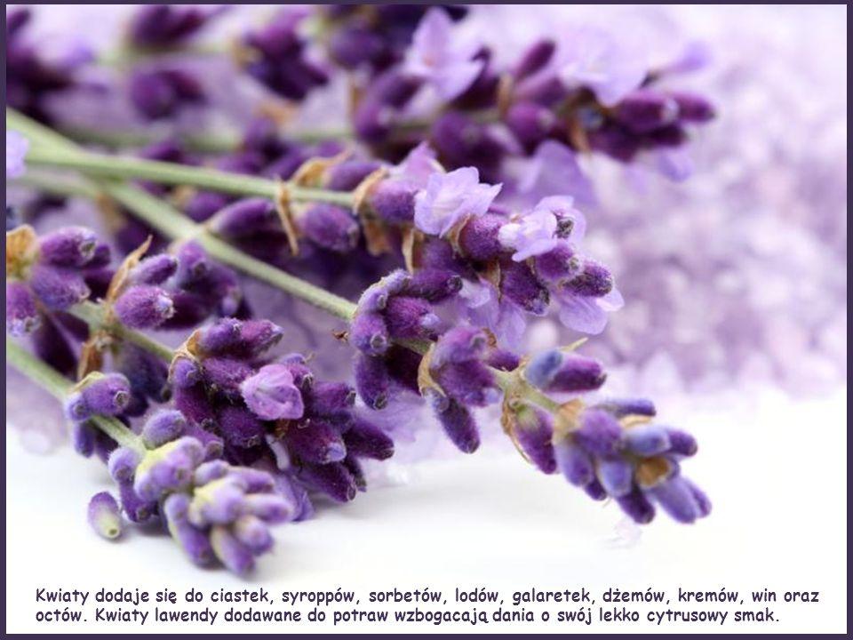 Lawenda znalazła bardzo wiekle zastosowań kulinarnych. Jest składnikiem herbat i mieszanek herbacianych.
