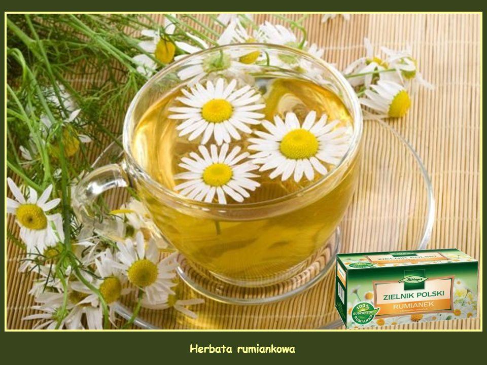 Rumianek (Chamaemelum nobile) ma kwiaty podobne do stokrotki, W kulinariach i ziołolecznictwie wykorzystuje się koszyczki kwiatowe rumianku pospoliteg