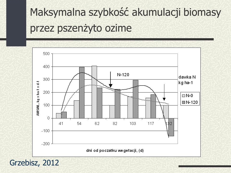 Maksymalna szybkość akumulacji biomasy przez pszenżyto ozime Grzebisz, 2012