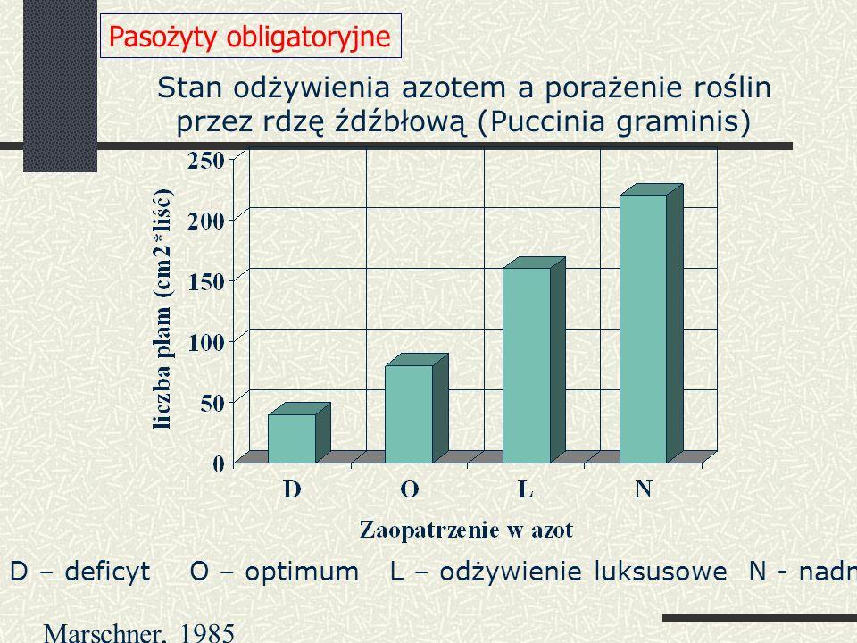 D – deficyt O – optimum L – odżywienie luksusowe N - nadmiar Stan odżywienia azotem a porażenie roślin przez rdzę źdźbłową (Puccinia graminis) Pasożyty obligatoryjne Marschner, 1985