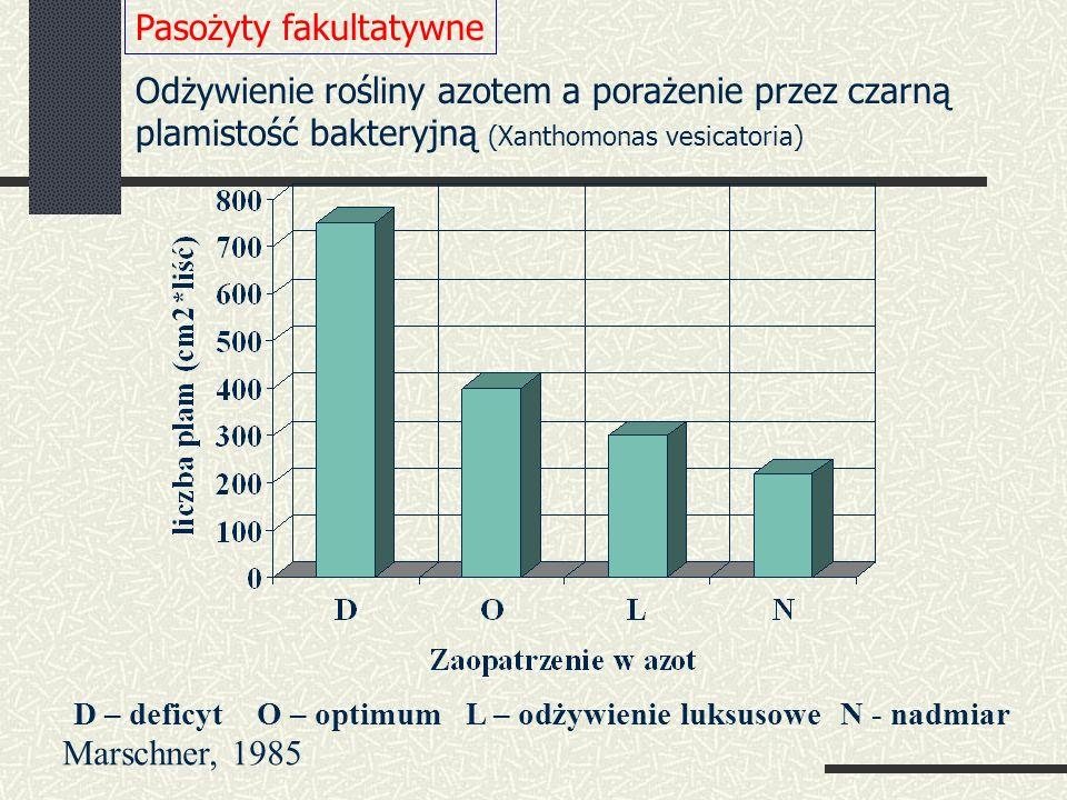 D – deficyt O – optimum L – odżywienie luksusowe N - nadmiar Odżywienie rośliny azotem a porażenie przez czarną plamistość bakteryjną (Xanthomonas vesicatoria) Pasożyty fakultatywne Marschner, 1985