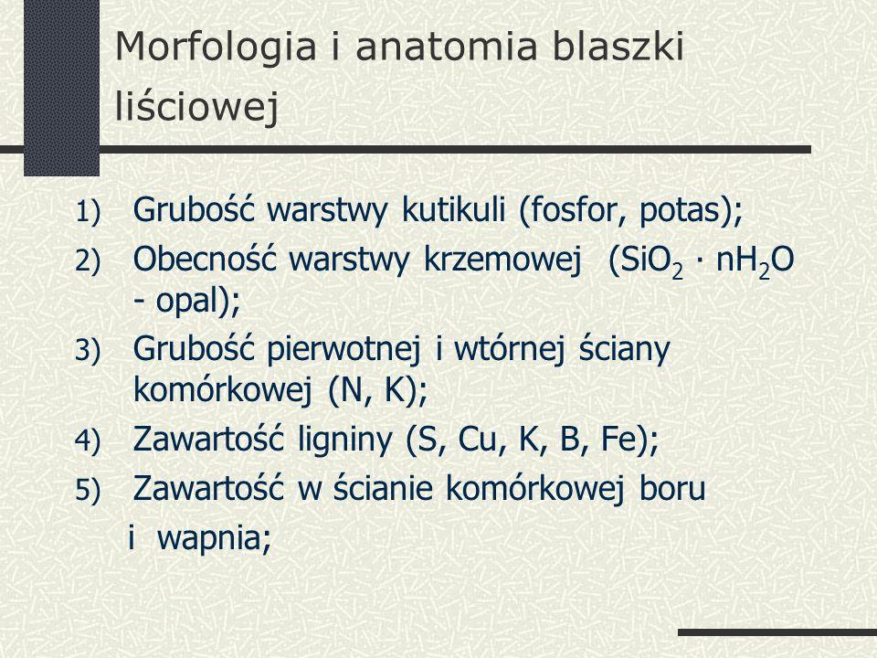 Morfologia i anatomia blaszki liściowej 1) Grubość warstwy kutikuli (fosfor, potas); 2) Obecność warstwy krzemowej (SiO 2 ∙ nH 2 O - opal); 3) Grubość pierwotnej i wtórnej ściany komórkowej (N, K); 4) Zawartość ligniny (S, Cu, K, B, Fe); 5) Zawartość w ścianie komórkowej boru i wapnia;