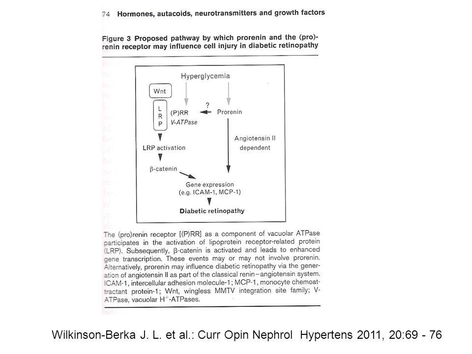 Wilkinson-Berka J. L. et al.: Curr Opin Nephrol Hypertens 2011, 20:69 - 76