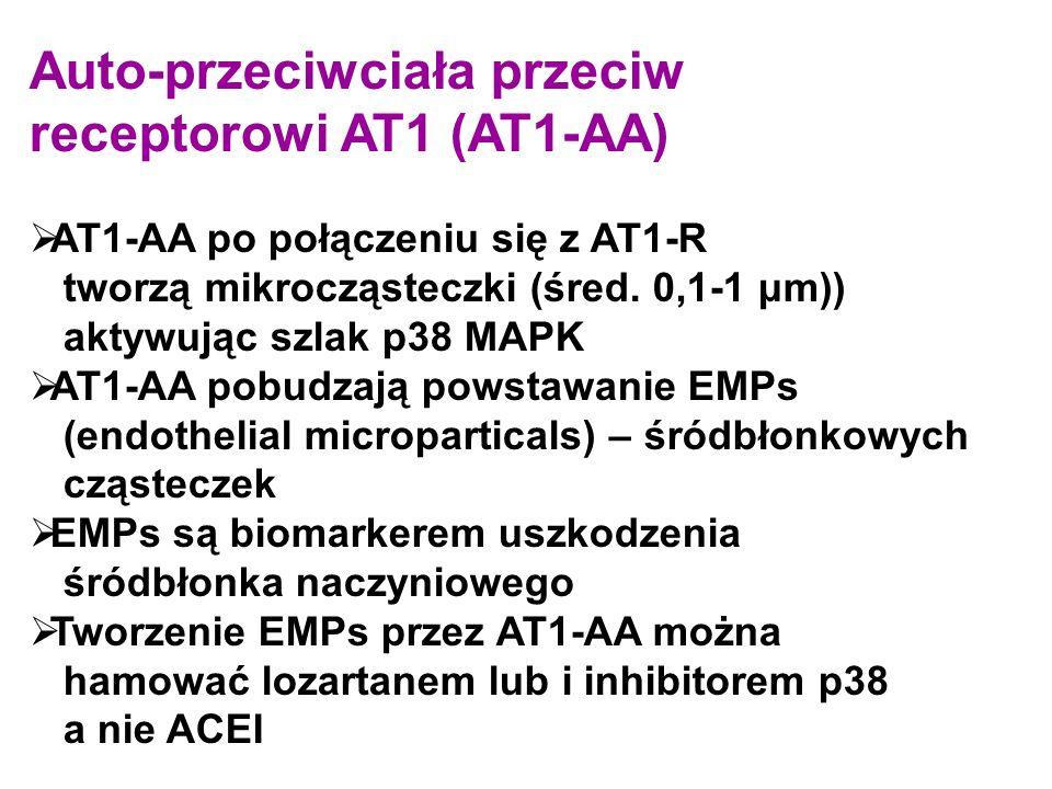 Auto-przeciwciała przeciw receptorowi AT1 (AT1-AA)  AT1-AA po połączeniu się z AT1-R tworzą mikrocząsteczki (śred. 0,1-1 μm)) aktywując szlak p38 MAP