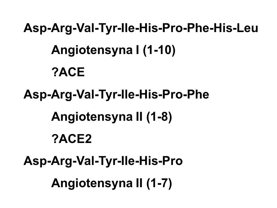 Asp-Arg-Val-Tyr-Ile-His-Pro-Phe-His-Leu Angiotensyna I (1-10) ACE Asp-Arg-Val-Tyr-Ile-His-Pro-Phe Angiotensyna II (1-8) ACE2 Asp-Arg-Val-Tyr-Ile-His-Pro Angiotensyna II (1-7)