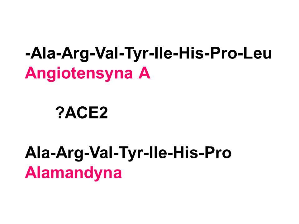 -Ala-Arg-Val-Tyr-Ile-His-Pro-Leu Angiotensyna A ?ACE2 Ala-Arg-Val-Tyr-Ile-His-Pro Alamandyna