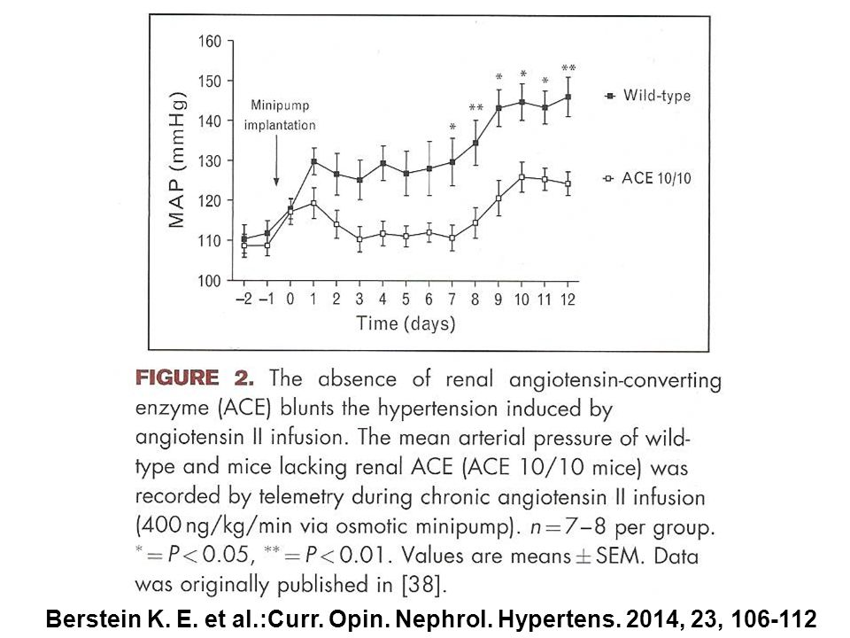 Berstein K. E. et al.:Curr. Opin. Nephrol. Hypertens. 2014, 23, 106-112