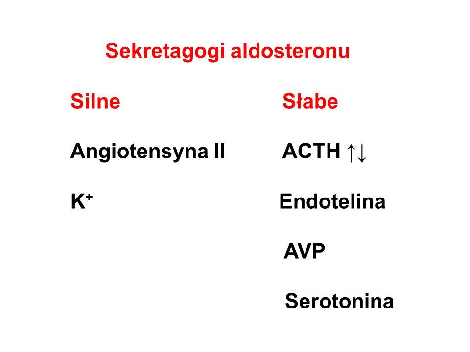 Sekretagogi aldosteronu SilneSłabe Angiotensyna IIACTH ↑↓ K + Endotelina AVP Serotonina