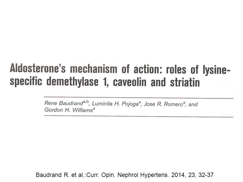 Baudrand R. et al.:Curr. Opin. Nephrol Hypertens. 2014, 23, 32-37