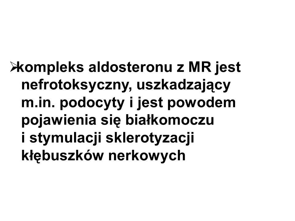  kompleks aldosteronu z MR jest nefrotoksyczny, uszkadzający m.in.