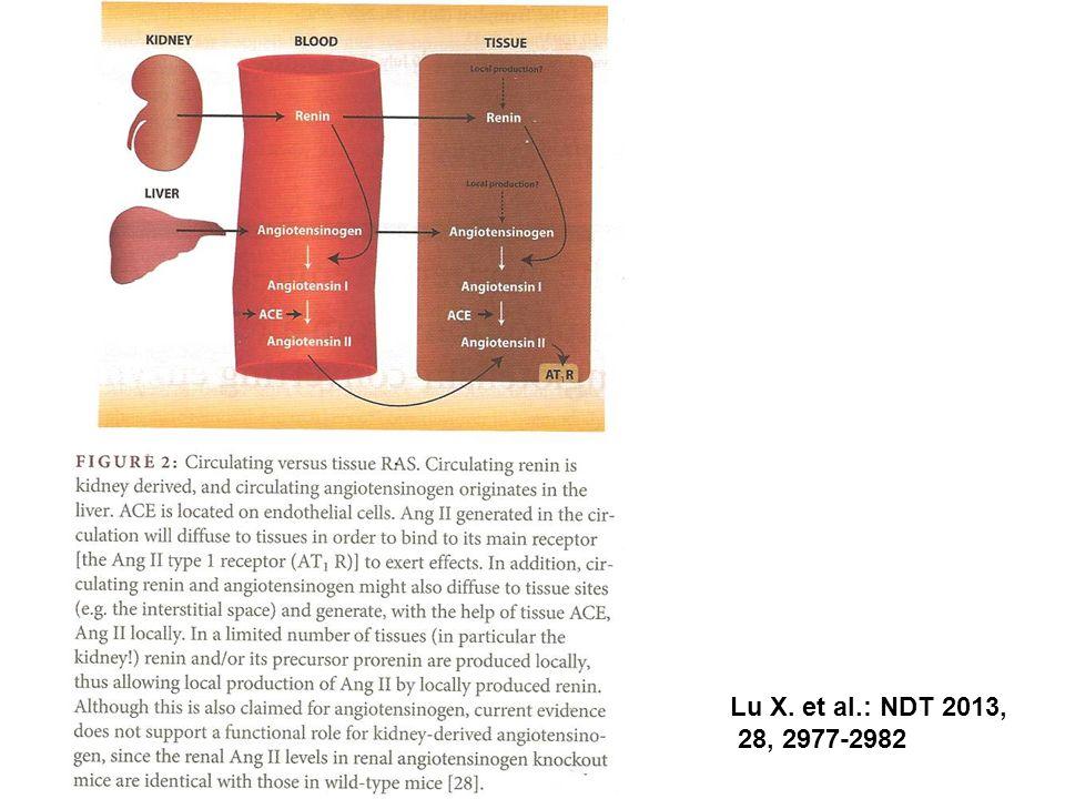 Lu X. et al.: NDT 2013, 28, 2977-2982