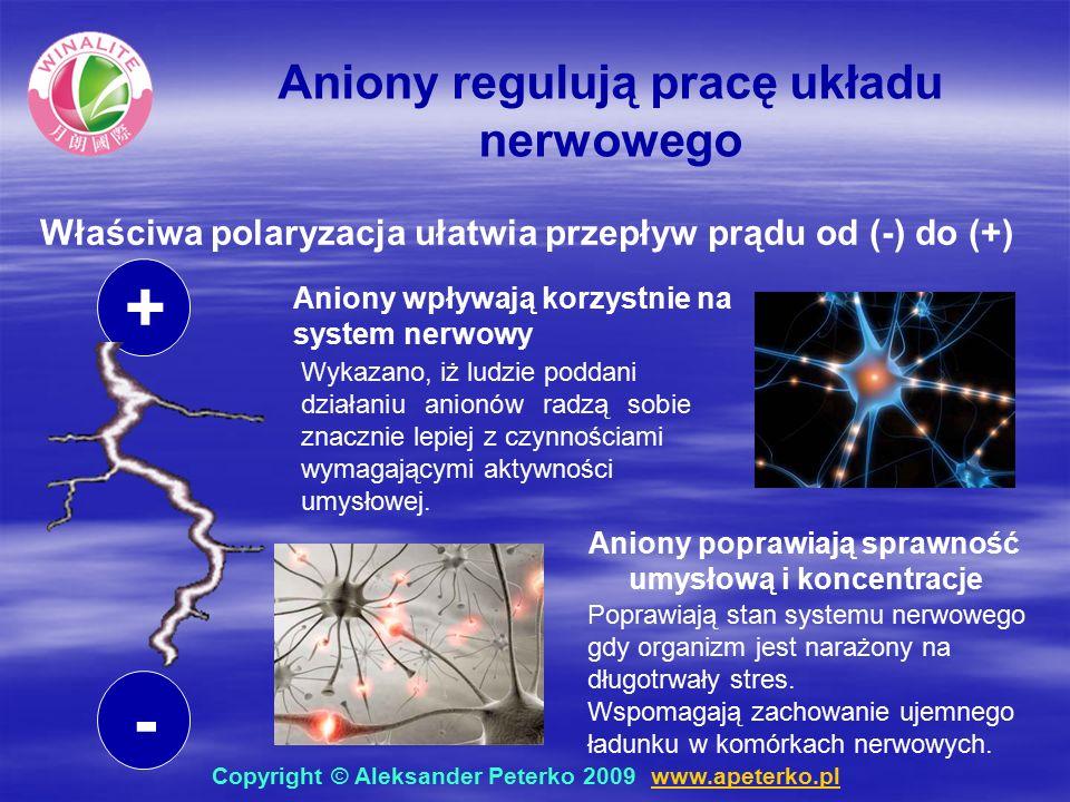 - + Aniony regulują pracę układu nerwowego Właściwa polaryzacja ułatwia przepływ prądu od (-) do (+) Aniony poprawiają sprawność umysłową i koncentracje Poprawiają stan systemu nerwowego gdy organizm jest narażony na długotrwały stres.