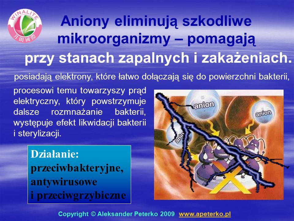Działanie: przeciwbakteryjne, antywirusowe i przeciwgrzybiczne Aniony eliminują szkodliwe mikroorganizmy – pomagają przy stanach zapalnych i zakażeniach.