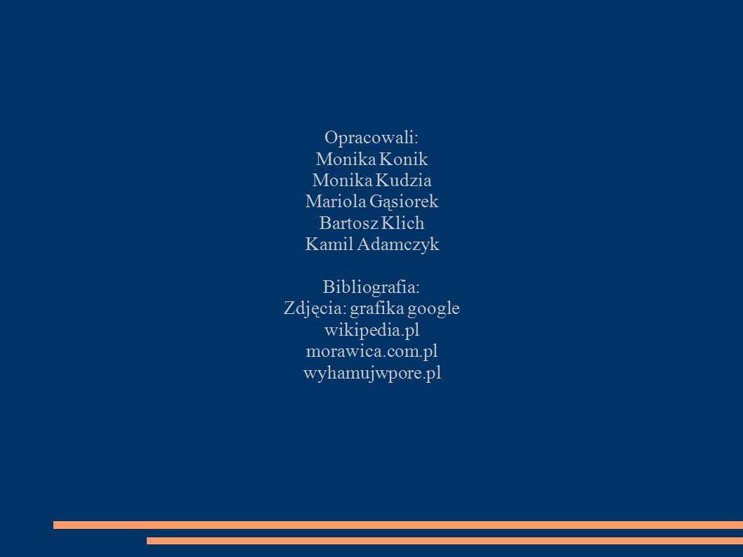 Opracowali: Monika Konik Monika Kudzia Mariola Gąsiorek Bartosz Klich Kamil Adamczyk Bibliografia: Zdjęcia: grafika google wikipedia.pl morawica.com.p