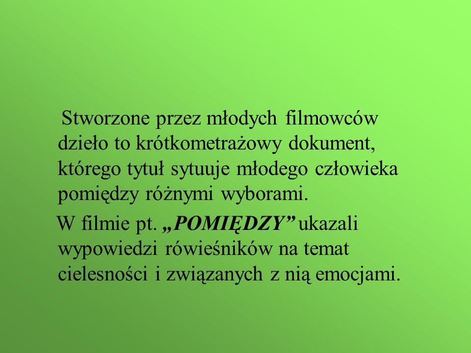 Stworzone przez młodych filmowców dzieło to krótkometrażowy dokument, którego tytuł sytuuje młodego człowieka pomiędzy różnymi wyborami.