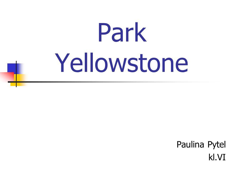 Park Yellowstone Paulina Pytel kl.VI