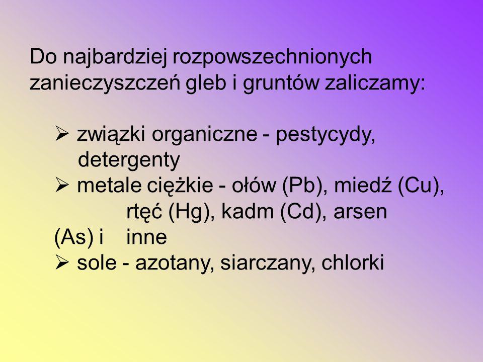 Do najbardziej rozpowszechnionych zanieczyszczeń gleb i gruntów zaliczamy:  związki organiczne - pestycydy, detergenty  metale ciężkie - ołów (Pb), miedź (Cu), rtęć (Hg), kadm (Cd), arsen (As) i inne  sole - azotany, siarczany, chlorki