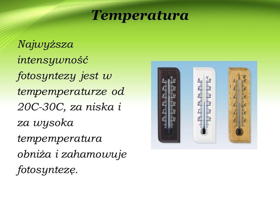 Temperatura Najwyższa intensywność fotosyntezy jest w tempemperaturze od 20C-30C, za niska i za wysoka tempemperatura obniża i zahamowuje fotosyntezę.