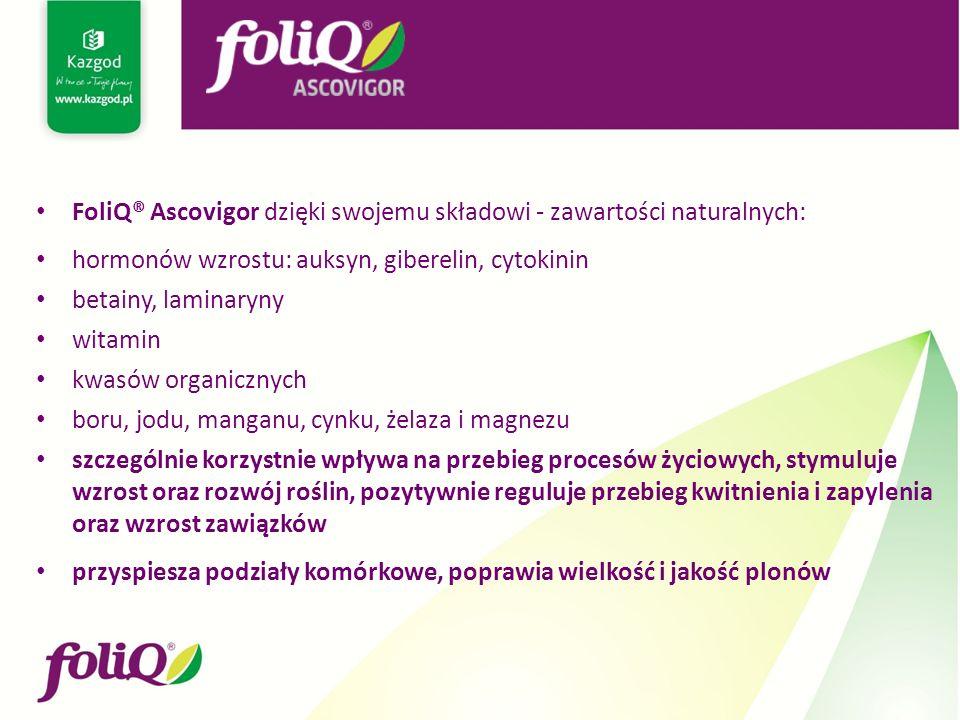 FoliQ® Ascovigor dzięki swojemu składowi - zawartości naturalnych: hormonów wzrostu: auksyn, giberelin, cytokinin betainy, laminaryny witamin kwasów organicznych boru, jodu, manganu, cynku, żelaza i magnezu szczególnie korzystnie wpływa na przebieg procesów życiowych, stymuluje wzrost oraz rozwój roślin, pozytywnie reguluje przebieg kwitnienia i zapylenia oraz wzrost zawiązków przyspiesza podziały komórkowe, poprawia wielkość i jakość plonów