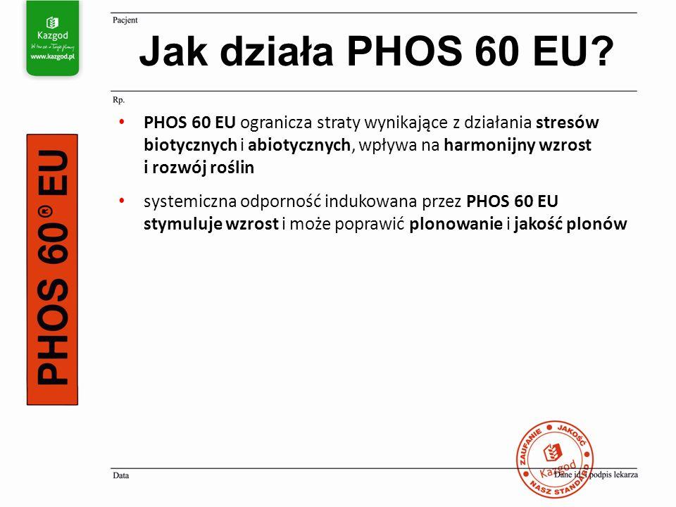 PHOS 60 EU ogranicza straty wynikające z działania stresów biotycznych i abiotycznych, wpływa na harmonijny wzrost i rozwój roślin systemiczna odporno