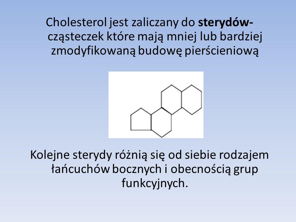 Cholesterol jest zaliczany do sterydów- cząsteczek które mają mniej lub bardziej zmodyfikowaną budowę pierścieniową Kolejne sterydy różnią się od siebie rodzajem łańcuchów bocznych i obecnością grup funkcyjnych.