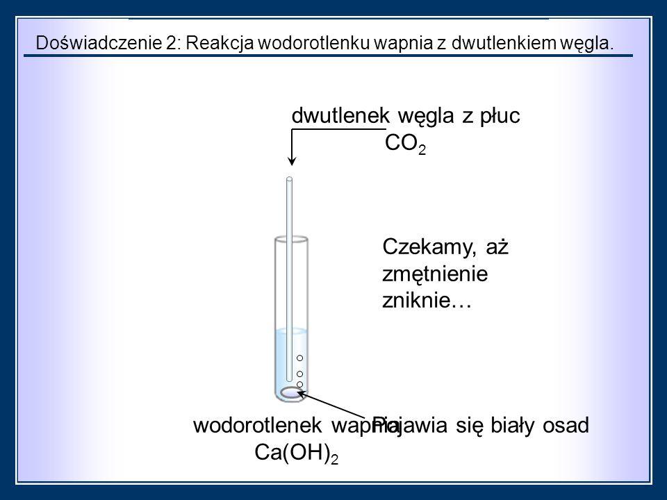 wodorotlenek wapnia Ca(OH) 2 dwutlenek węgla z płuc CO 2 Doświadczenie 2: Reakcja wodorotlenku wapnia z dwutlenkiem węgla.