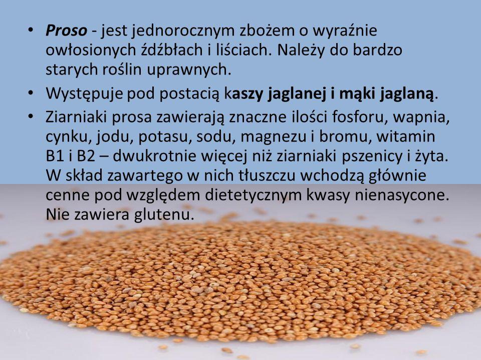 Proso - jest jednorocznym zbożem o wyraźnie owłosionych źdźbłach i liściach. Należy do bardzo starych roślin uprawnych. Występuje pod postacią kaszy j