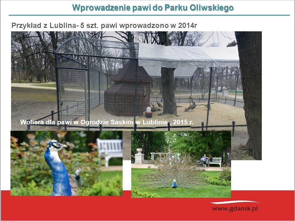 Wprowadzenie pawi do Parku Oliwskiego Przykład z Lublina- 5 szt. pawi wprowadzono w 2014r Woliera dla pawi w Ogrodzie Saskim w Lublinie, 2015 r.