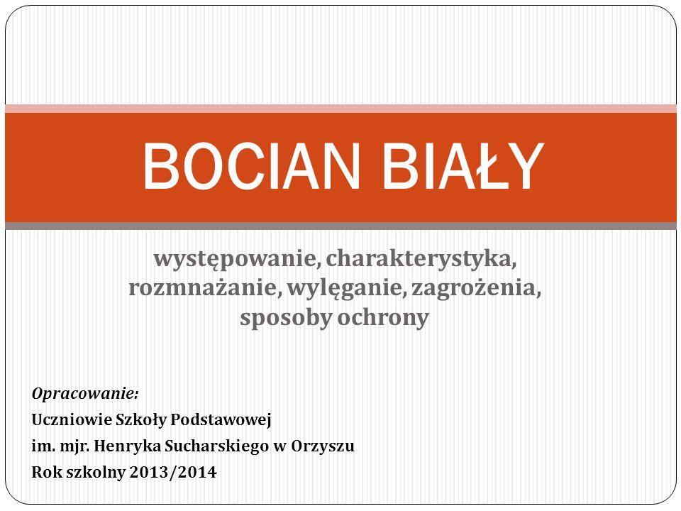 Występowanie Bocian zasiedla praktycznie całą Polskę, z wyjątkiem pasm górskich i większych, zwartych kompleksów leśnych jak puszcze.