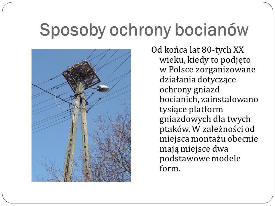 Sposoby ochrony bocianów Od końca lat 80-tych XX wieku, kiedy to podjęto w Polsce zorganizowane działania dotyczące ochrony gniazd bocianich, zainstalowano tysiące platform gniazdowych dla twych ptaków.