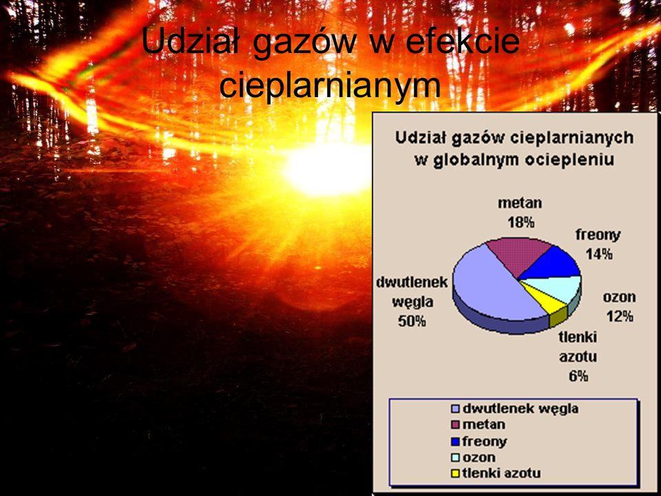 Udział gazów w efekcie cieplarnianym