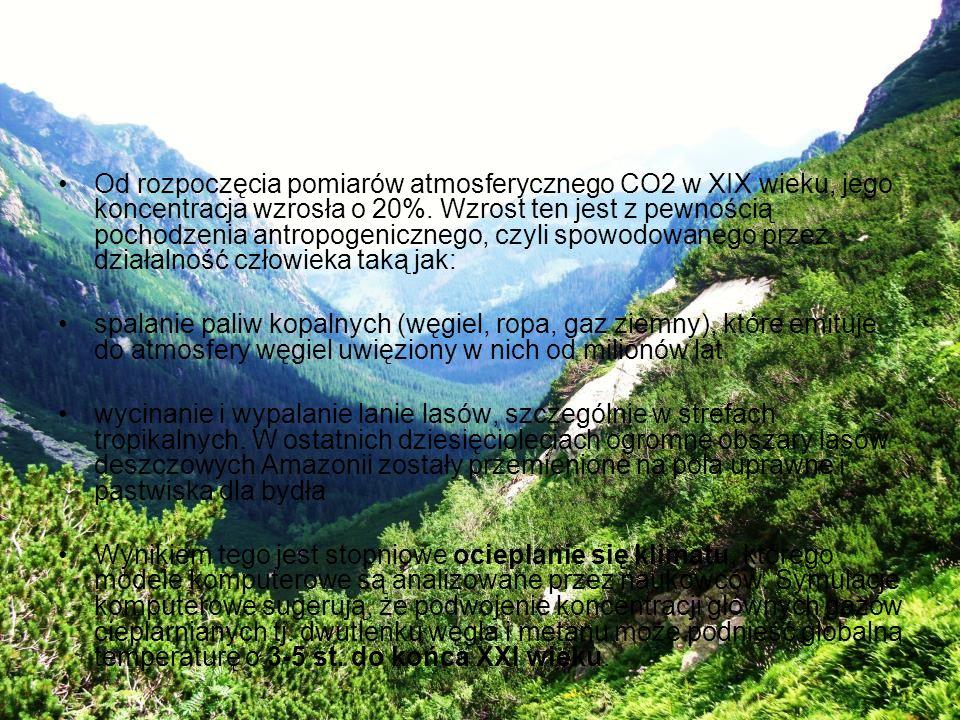 Od rozpoczęcia pomiarów atmosferycznego CO2 w XIX wieku, jego koncentracja wzrosła o 20%. Wzrost ten jest z pewnością pochodzenia antropogenicznego, c
