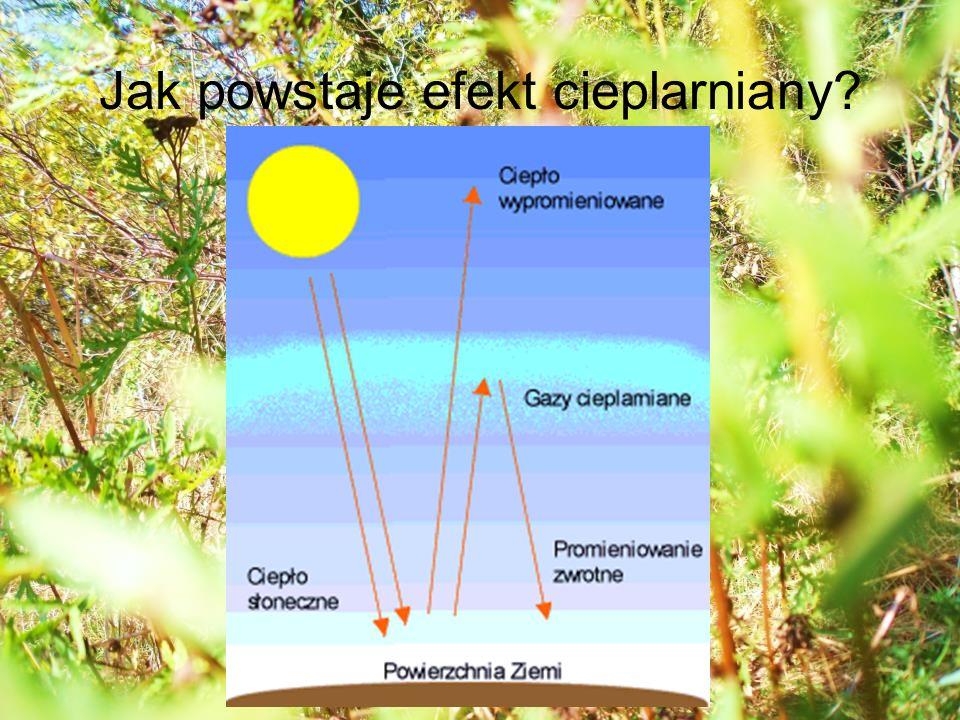 Jak powstaje efekt cieplarniany?