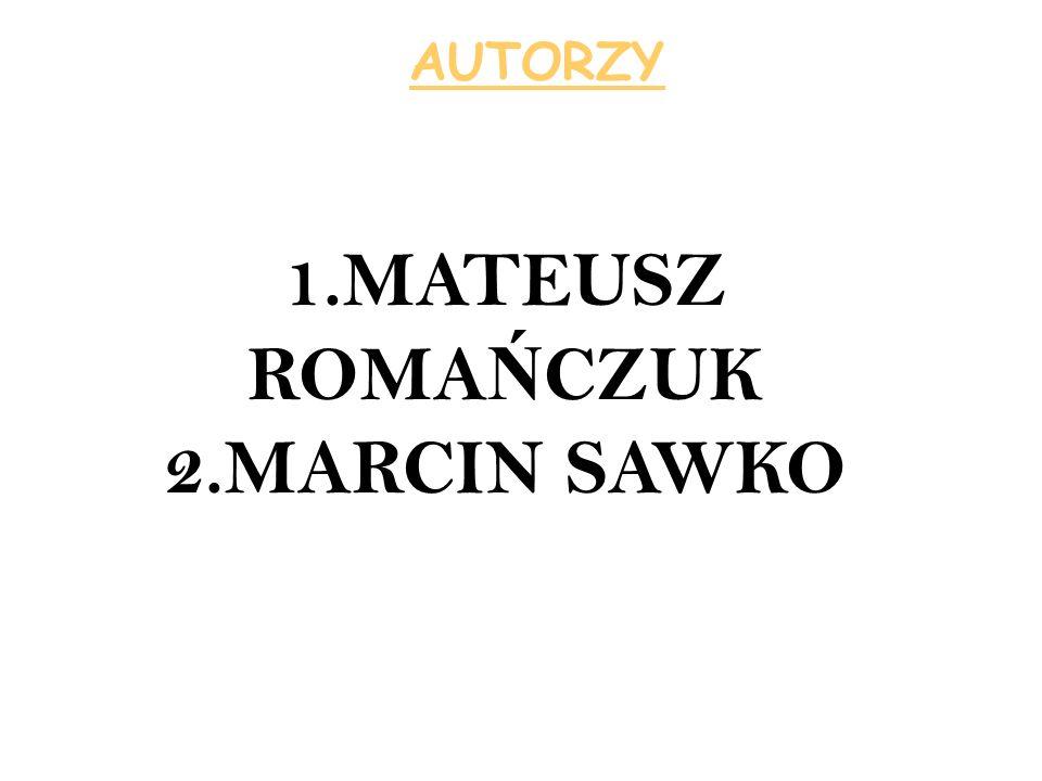 AUTORZY 1.MATEUSZ ROMA Ń CZUK 2.MARCIN SAWKO