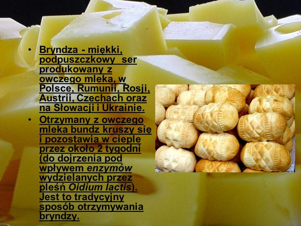 Bryndza - miękki, podpuszczkowy ser produkowany z owczego mleka, w Polsce, Rumunii, Rosji, Austrii, Czechach oraz na Słowacji i Ukrainie.