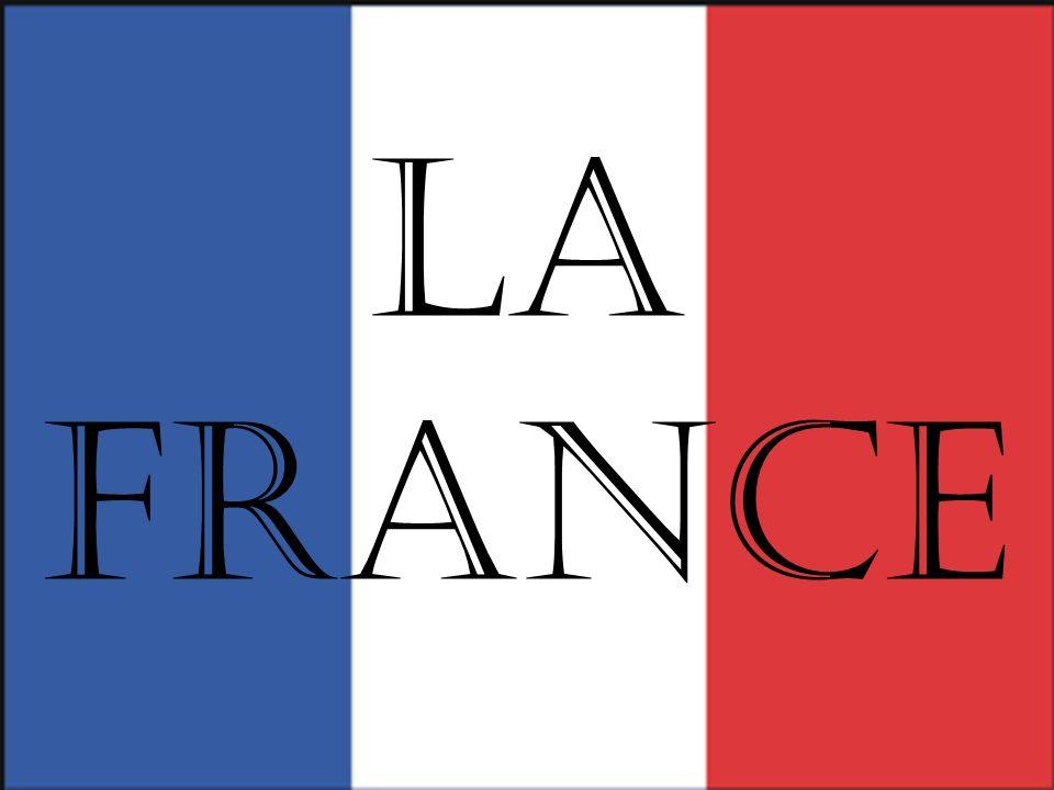 Dowodami na gotycką architekturę katedry Notre Dame w Paryżu są:
