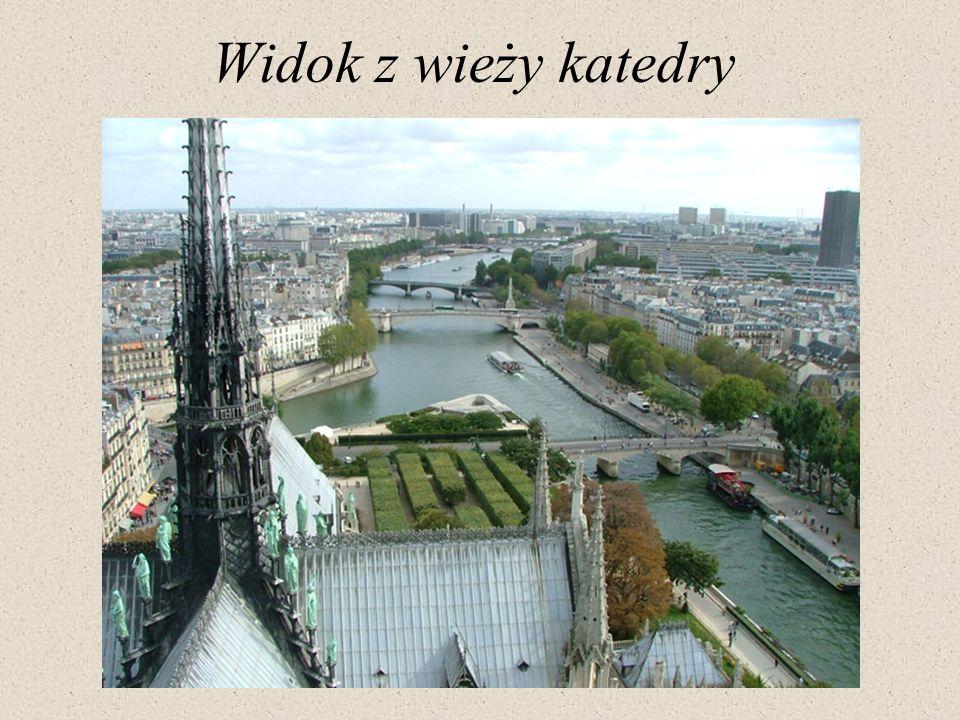 Widok z wieży katedry