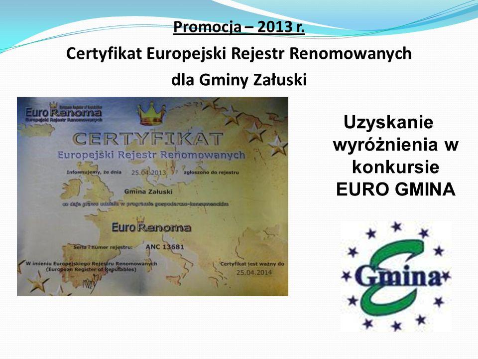 Promocja – 2013 r.