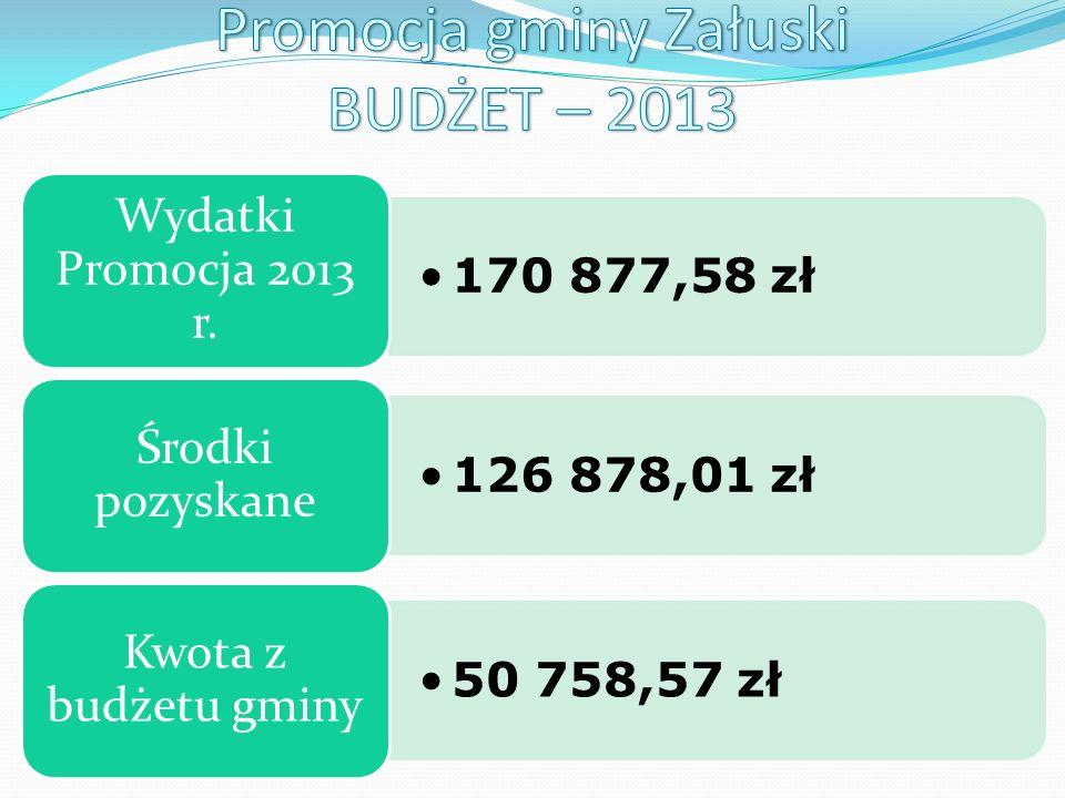 170 877,58 zł Wydatki Promocja 2013 r.