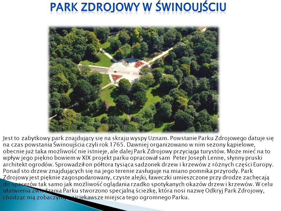 Jest to zabytkowy park znajdujący się na skraju wyspy Uznam. Powstanie Parku Zdrojowego datuje się na czas powstania Świnoujścia czyli rok 1765. Dawni