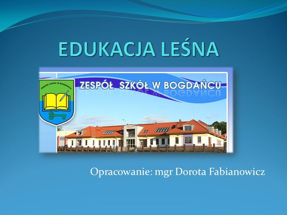 Edukacja leśna w polskich szkołach Kształtowanie właściwych postaw dzieci i młodzieży odbywa się na poszczególnych poziomach kształcenia zawartych w podstawie programowej jako edukacja ekologiczna i przyrodnicza.