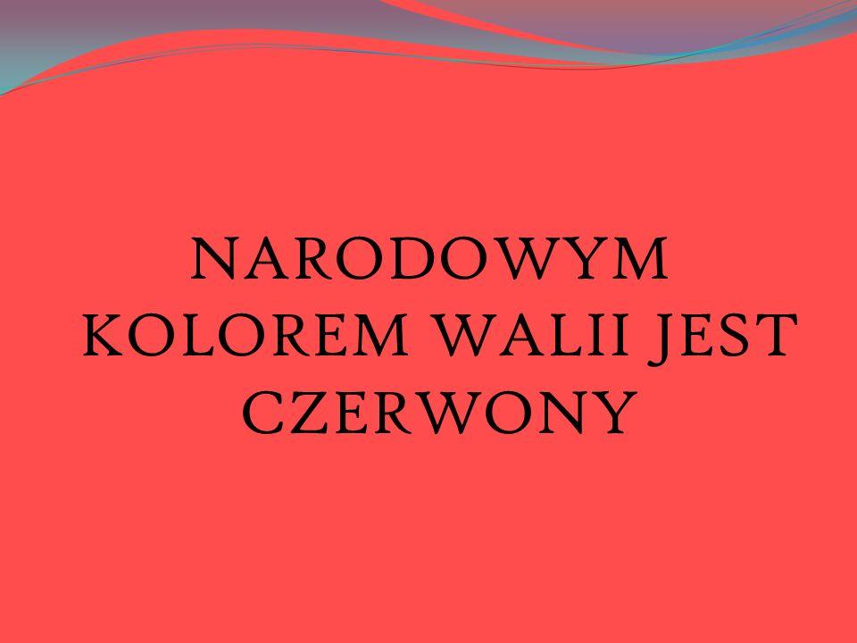 NARODOWYM KOLOREM WALII JEST CZERWONY