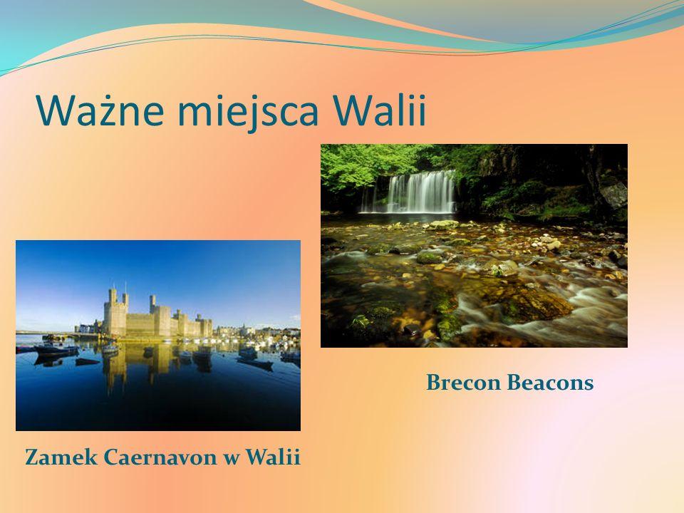 Ważne miejsca Walii Zamek Caernavon w Walii Brecon Beacons