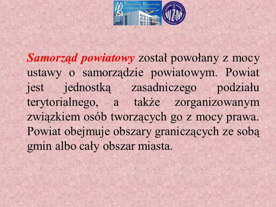 Samorząd powiatowy został powołany z mocy ustawy o samorządzie powiatowym. Powiat jest jednostką zasadniczego podziału terytorialnego, a także zorgani