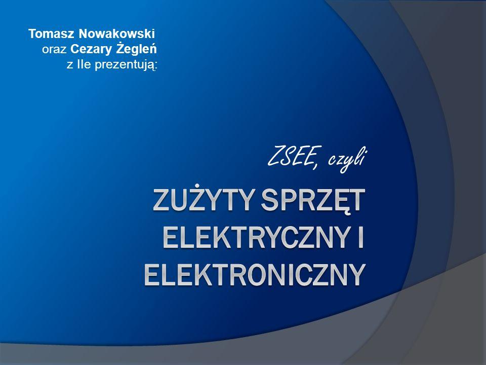 ZSEE, czyli Tomasz Nowakowski oraz Cezary Żegleń z IIe prezentują:
