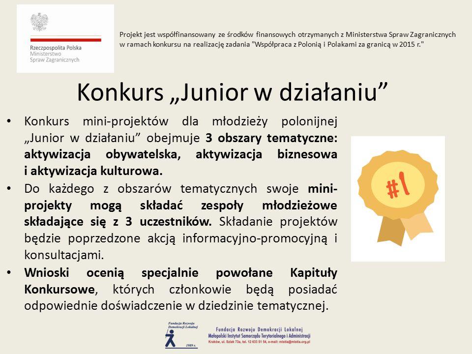 """Konkurs mini-projektów dla młodzieży polonijnej """"Junior w działaniu obejmuje 3 obszary tematyczne: aktywizacja obywatelska, aktywizacja biznesowa i aktywizacja kulturowa."""