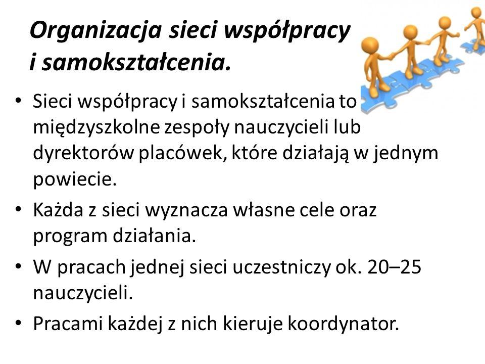 Koordynatorzy poszczególnych sieci: Joanna Kazimierczak (sieć matematyczna) Rafał Panfil (sieć medialna) Maciej Wojciechowski (sieć informatyczna) Piotr Praczukowski (sieć dyrektorska)