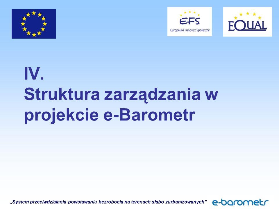 """""""System przeciwdziałania powstawaniu bezrobocia na terenach słabo zurbanizowanych"""" IV. Struktura zarządzania w projekcie e-Barometr"""